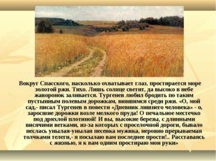 Вокруг Спасского, насколько охватывает глаз, простирается море золотой ржи. Т