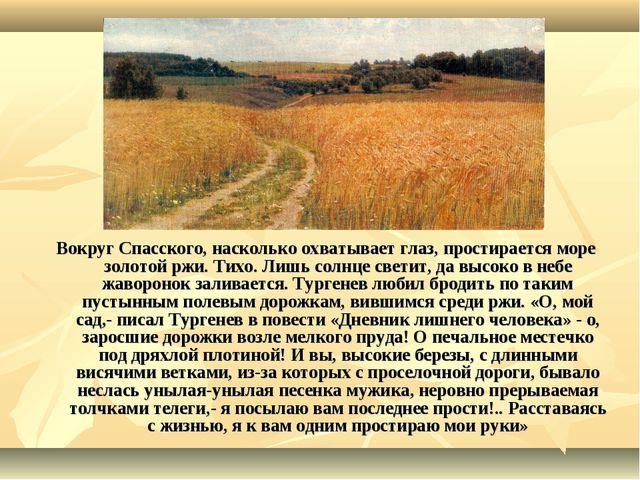 Вокруг Спасского, насколько охватывает глаз, простирается море золотой ржи. Т...