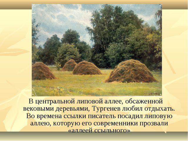 В центральной липовой аллее, обсаженной вековыми деревьями, Тургенев любил от...