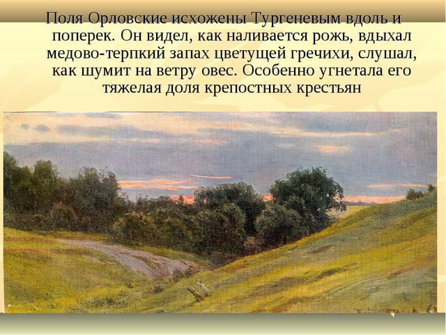 Поля Орловские исхожены Тургеневым вдоль и поперек. Он видел, как наливается...