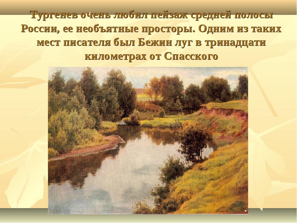 Тургенев очень любил пейзаж средней полосы России, ее необъятные просторы. О...