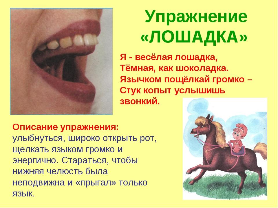 Упражнение «ЛОШАДКА» Описание упражнения: улыбнуться, широко открыть рот, щел...