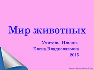 Мир животных Учитель Ильина Елена Владиславовна 2015