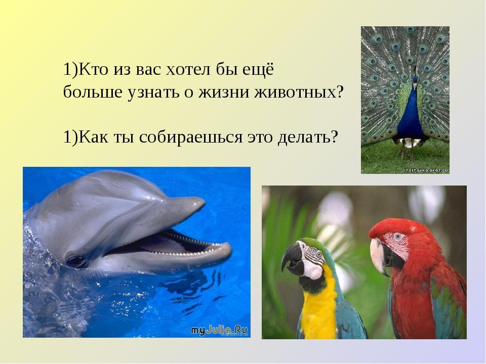 Кто из вас хотел бы ещё больше узнать о жизни животных? Как ты собираешься эт...