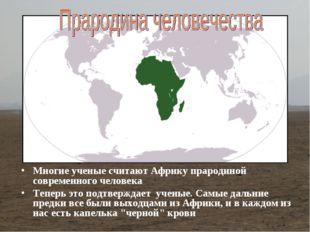 Многие ученые считают Африку прародиной современного человека Теперь это подт