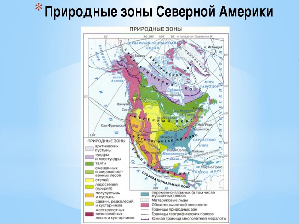 Природные зоны Северной Америки