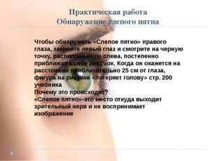 Практическая работа Обнаружение слепого пятна Чтобы обнаружить «Слепое пятно»