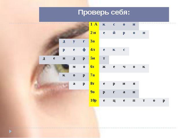Проверь себя: 1А к с о н  2н е й р о н д у г 3а р е ф 4л е к с д е н д р 5и...