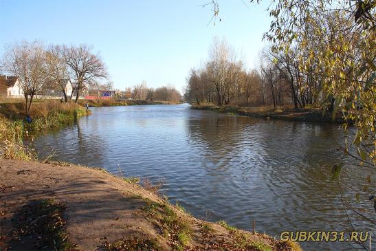 Река Оскол в Старом Осколе