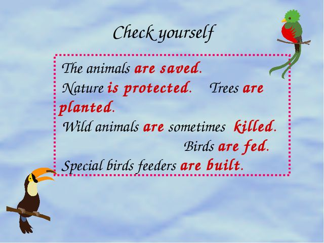 Check yourself The animals are saved. Nature is protected. Trees are planted....