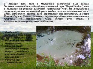 В декабре 1985 года в Марийской республике был создан Государственный природн