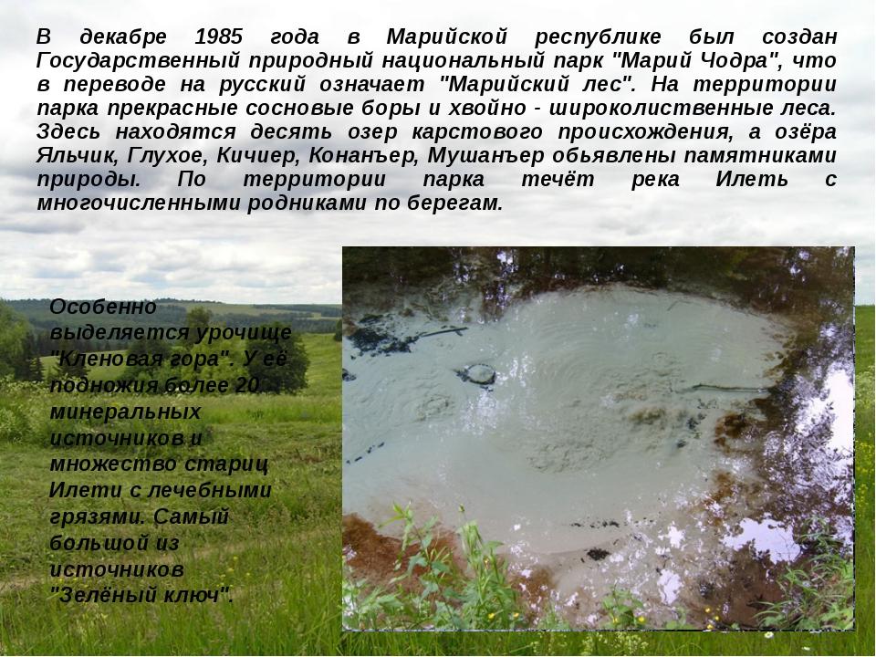 В декабре 1985 года в Марийской республике был создан Государственный природн...