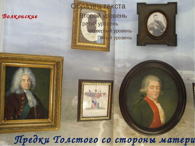 Предки Толстого со стороны матери Волконские