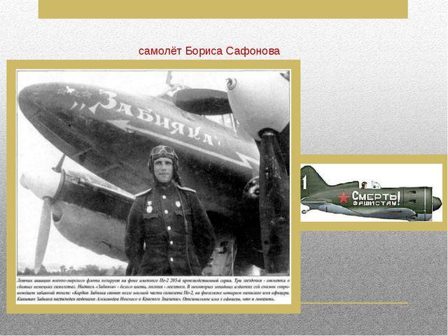 самолёт Бориса Сафонова