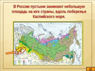 В России пустыни занимают небольшую площадь на юге страны, вдоль побережья Ка