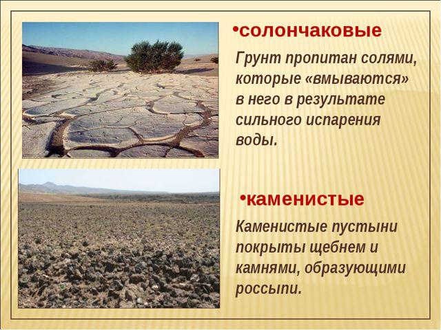 каменистые Каменистые пустыни покрыты щебнем и камнями, образующими россыпи....