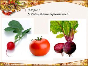 Вопрос 4 У каких овощей «красный нос»?