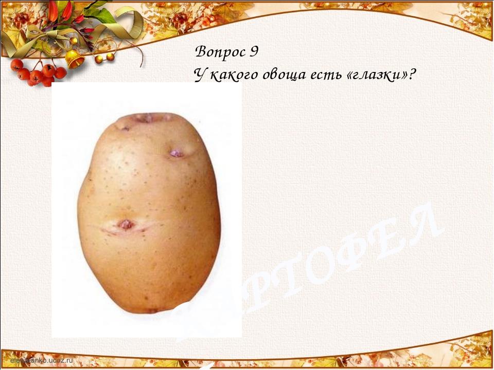 Вопрос 9 У какого овоща есть «глазки»? КАРТОФЕЛЬ