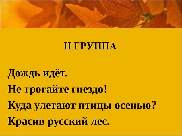 Дождь идёт. Не трогайте гнездо! Куда улетают птицы осенью? Красив русский ле...