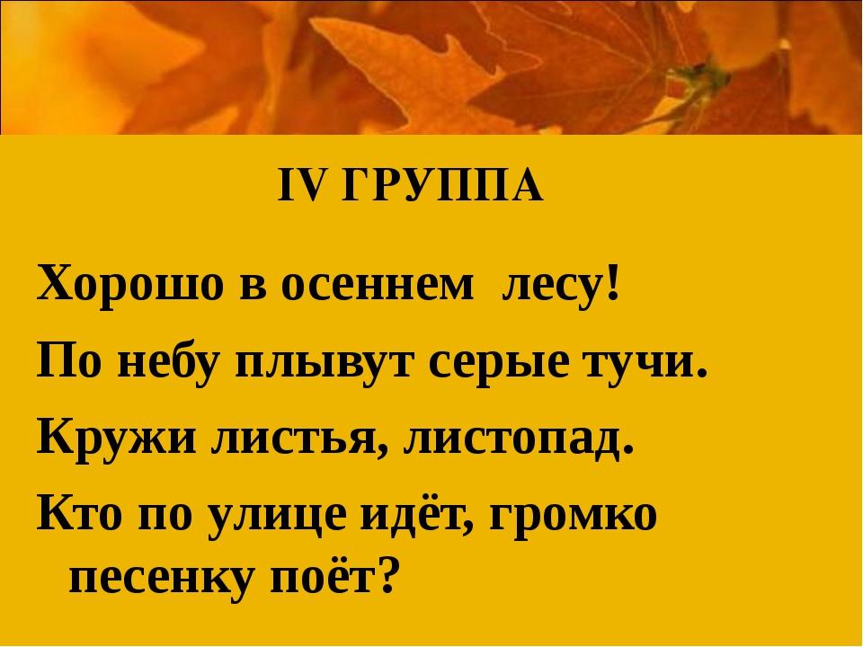 Хорошо в осеннем лесу! По небу плывут серые тучи. Кружи листья, листопад. Кто...