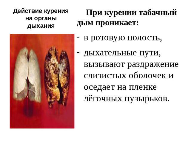 Действие курения на органы дыхания При курении табачный дым проникает: в рото...