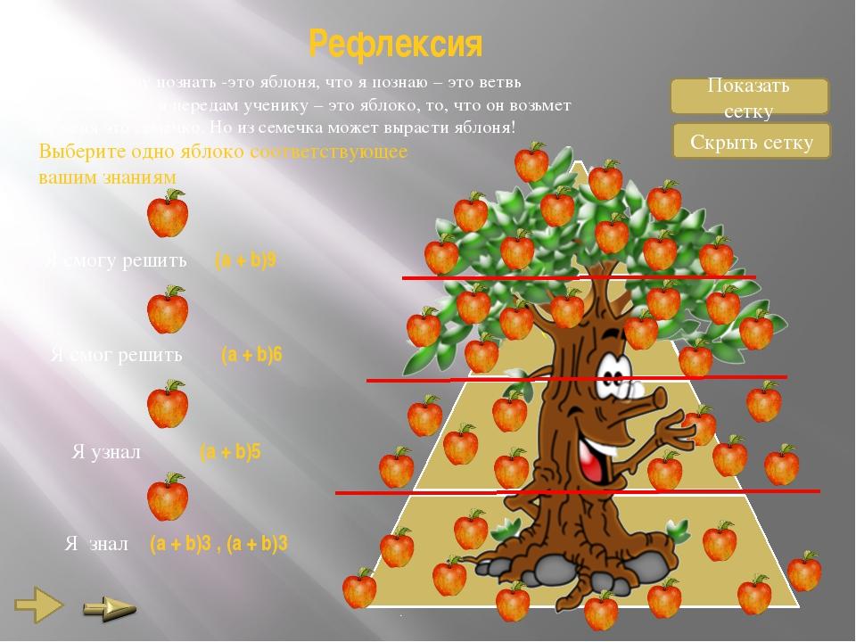 Рефлексия То, что я хочу познать -это яблоня, что я познаю – это ветвь яблони...