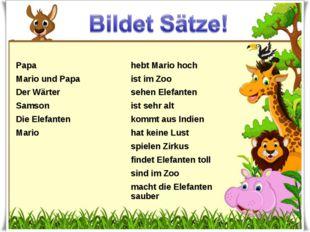 Papahebt Mario hoch Mario und Papaist im Zoo Der Wärtersehen Elefanten S
