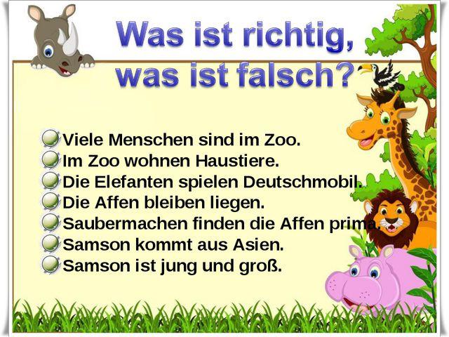 Viele Menschen sind im Zoo. Im Zoo wohnen Haustiere. Die Elefanten spielen D...
