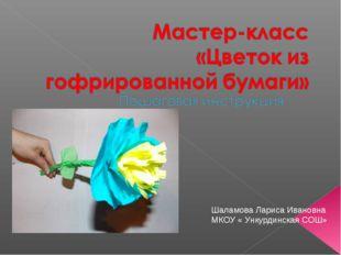 Шаламова Лариса Ивановна МКОУ « Ункурдинская СОШ»