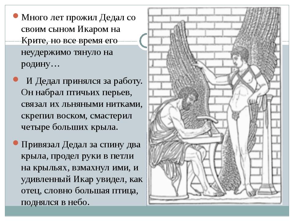 Много лет прожил Дедал со своим сыном Икаром на Крите, но все время его неуд...