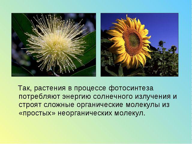 Так, растения в процессе фотосинтеза потребляют энергию солнечного излучения...