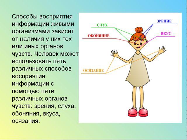 Способы восприятия информации живыми организмами зависят от наличия у них те...