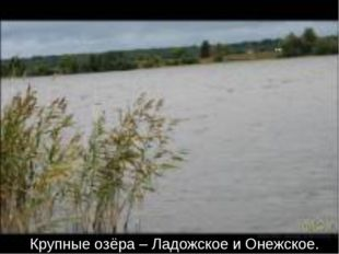 Крупные озёра – Ладожское и Онежское.