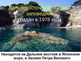 * Дальневосточный морской заповедник создан в 1978 году Находится на Дальнем