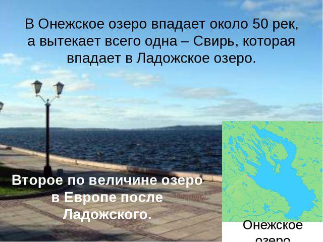 Онежское озера В Онежское озеро впадает около 50 рек, а вытекает всего одна...