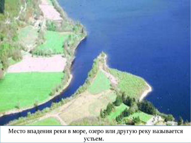 Место впадения реки в море, озеро или другую реку называется устьем.