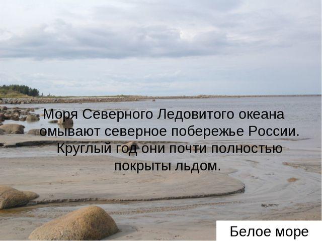 Белое море Моря Северного Ледовитого океана омывают северное побережье России...