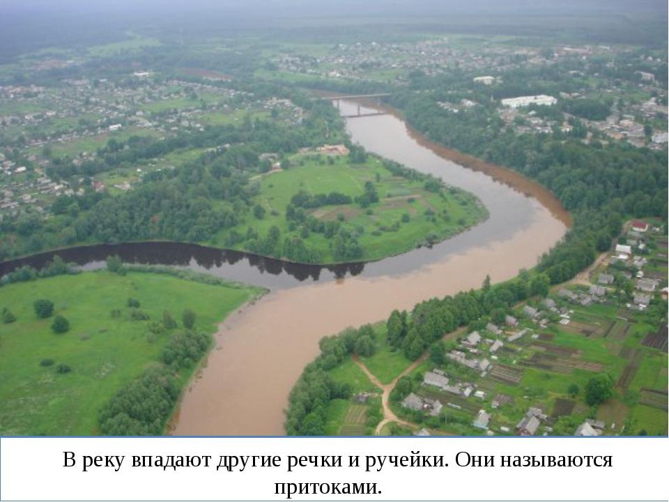 В реку впадают другие речки и ручейки. Они называются притоками.