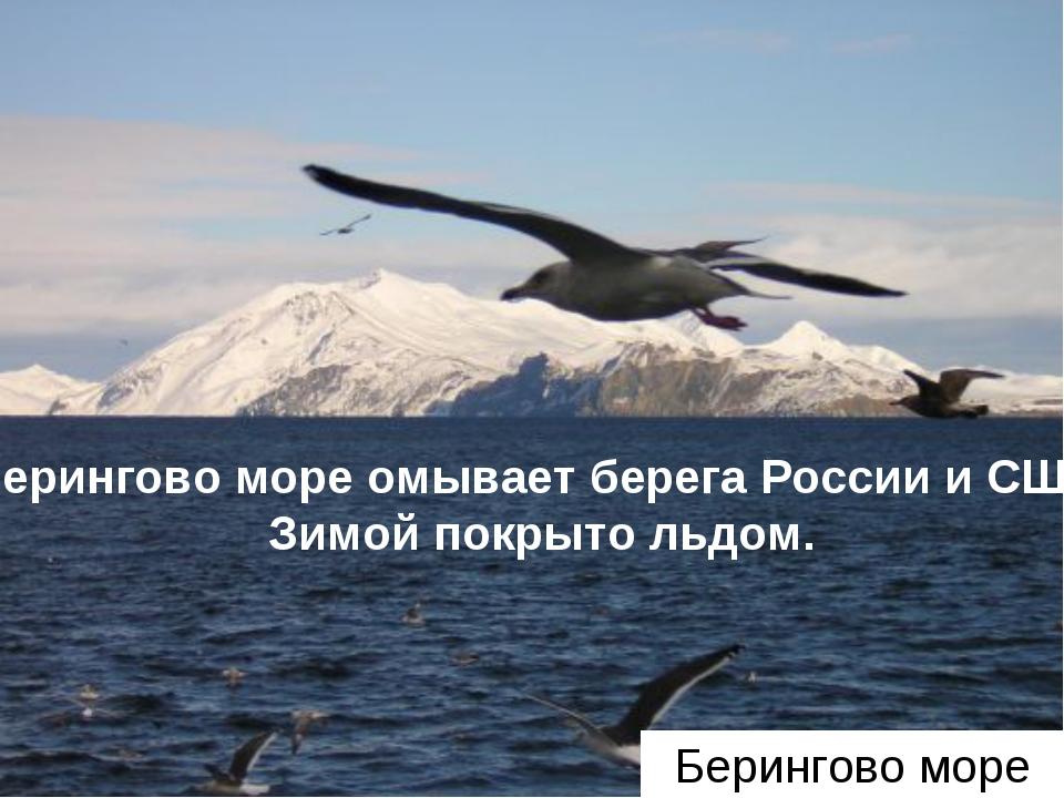 Берингово море Берингово море омывает берега России и США. Зимой покрыто льдом.