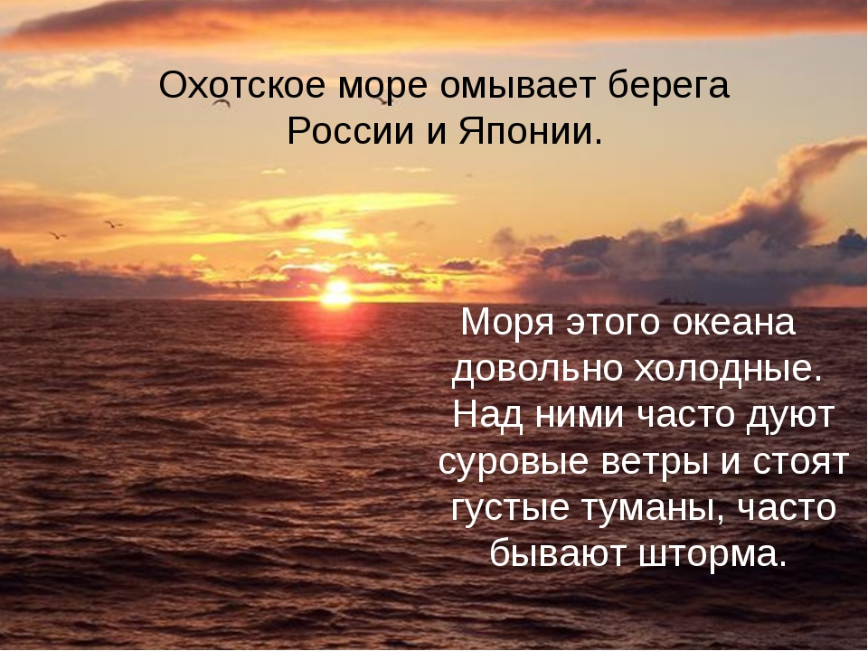 Охотское море Моря этого океана довольно холодные. Над ними часто дуют суровы...