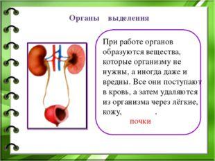 Органы выделения При работе органов образуются вещества, которые организму не