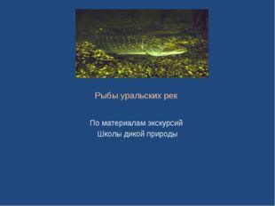 Рыбы уральских рек По материалам экскурсий Школы дикой природы