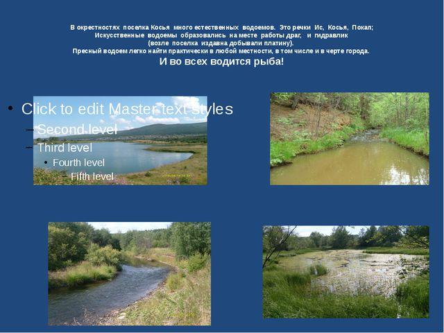 В окрестностях поселка Косья много естественных водоемов. Это речки Ис, Кось...