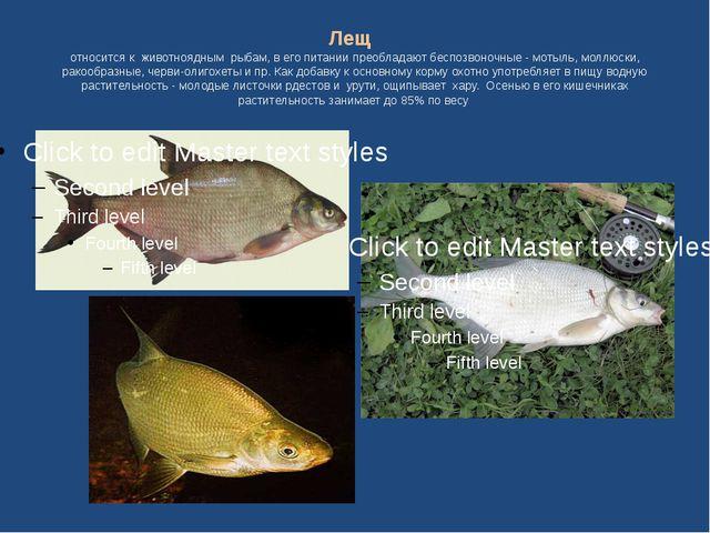 Лещ относится к животноядным рыбам, в его питании преобладают беспозвоночные...