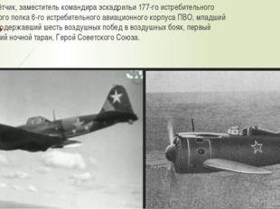 Военный лётчик, заместитель командира эскадрильи 177-го истребительного авиац