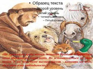 Святой Франциск Ассизский «Не причинять вреда нашим меньшим братьям – первей