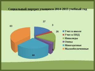 Социальный портрет учащихся 2014-2015 учебный год FokinaLida.75@mail.ru