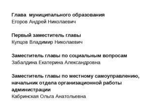 Глава муниципального образования Егоров Андрей Николаевич  Первый заместите
