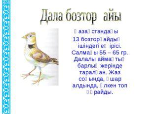 Қазақстандағы 13 бозторғайдың ішіндегі ең ірісі. Салмағы 55 – 65 гр. Далалы а