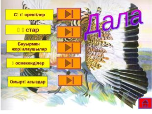 Сүтқоректілер Құстар Бауырмен жорғалаушылар Қосмекенділер Омыртқасыздар